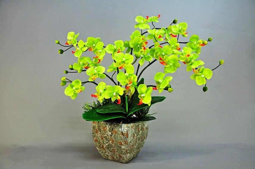 古风手绘兰花植物