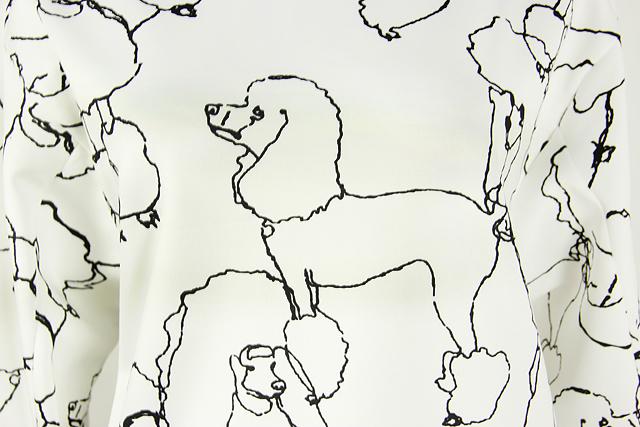 手绘贵宾犬结构图